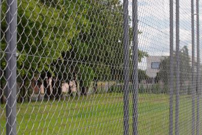 Žogi sporta laukumiem
